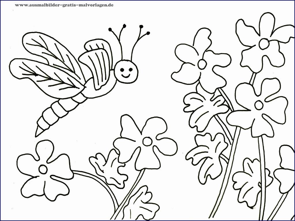 Ausmalbilder Schmetterling Mit Blume Neu Ausmalbilder Schmetterlinge Kostenlos Inspirierend Malvorlagen Igel Fotografieren