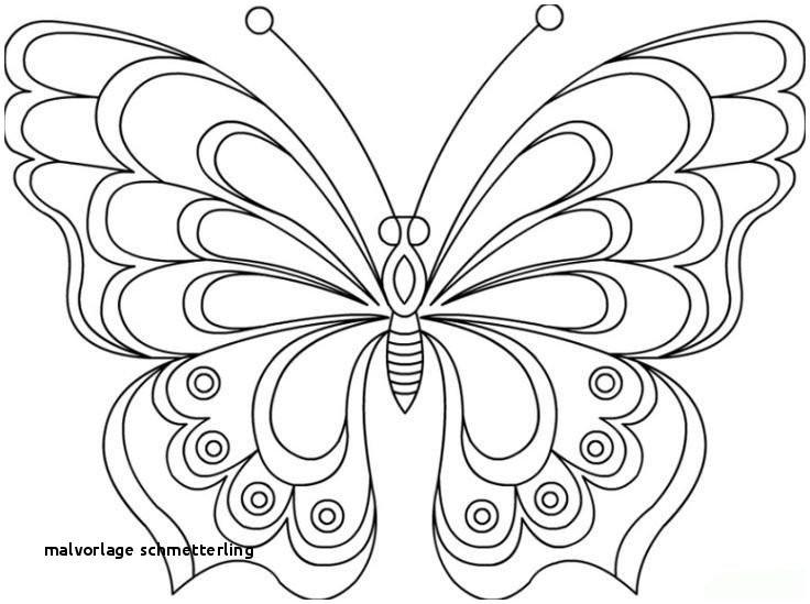 Ausmalbilder Schmetterling Mit Blume Neu Malvorlage Schmetterling S S Media Cache Ak0 Pinimg originals 0d D0 Sammlung