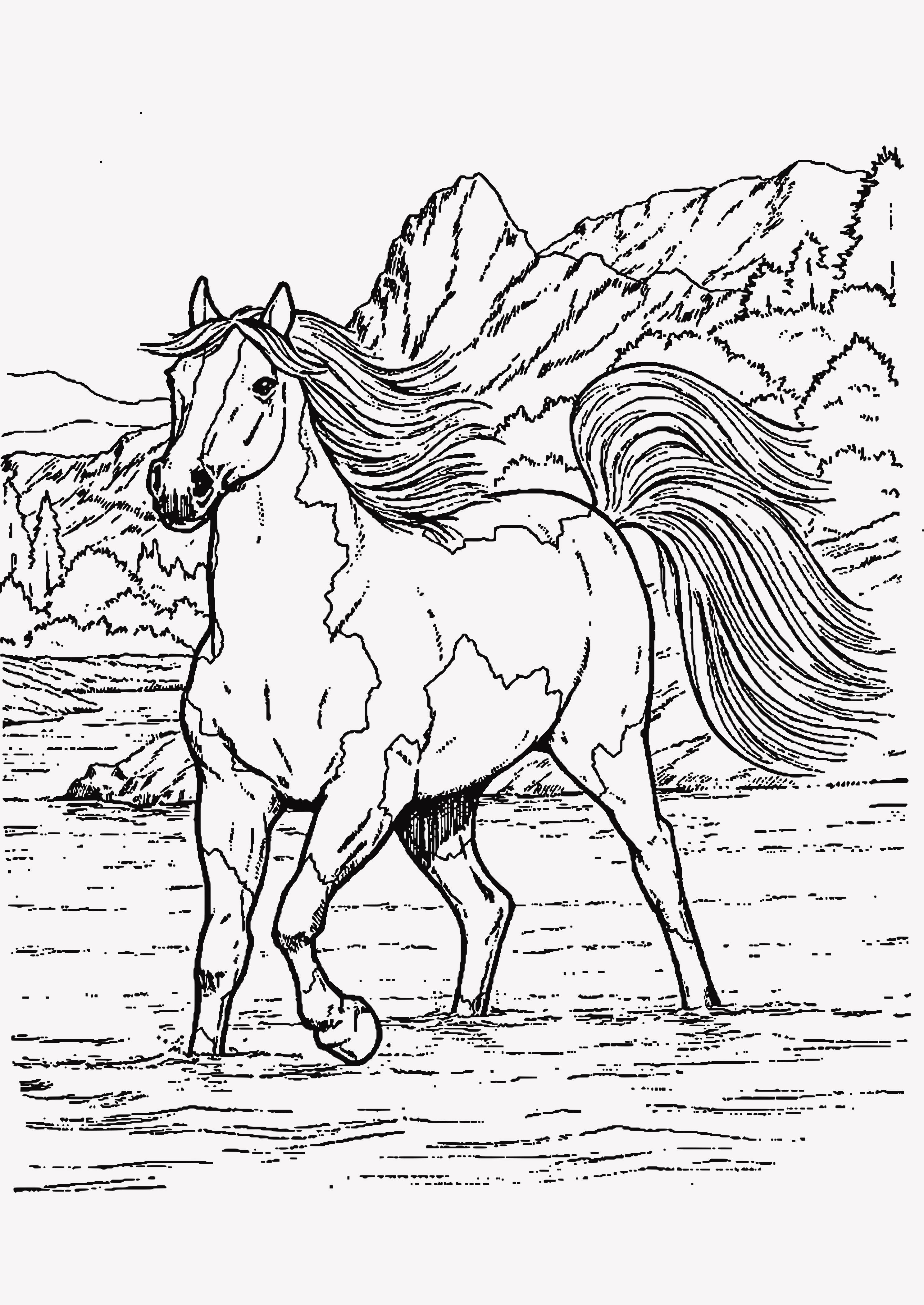 Ausmalbilder Schule Zum Ausdrucken Einzigartig 45 Best Ausmalbilder Pferde Gratis Zum Drucken Stock