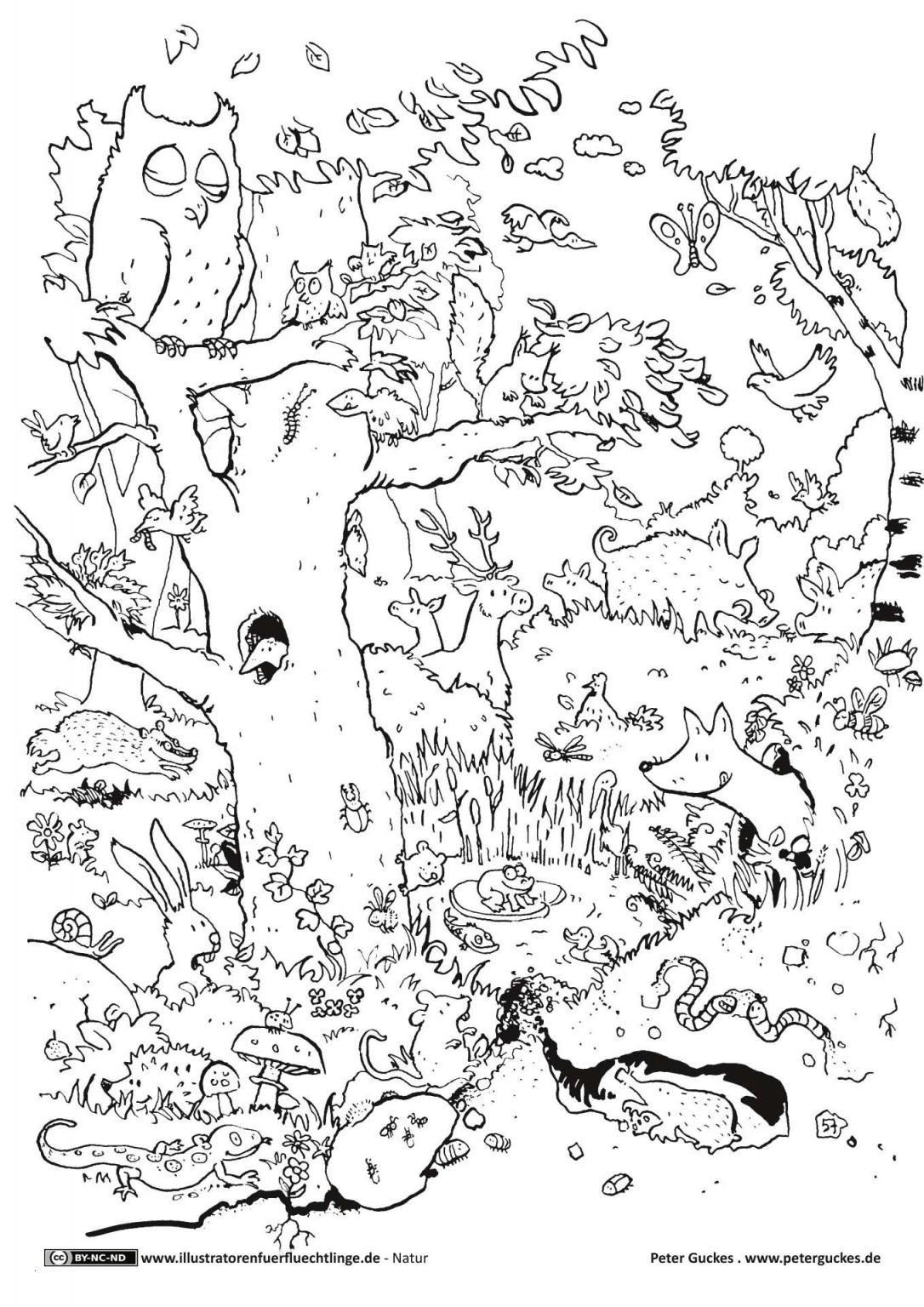 Ausmalbilder thema Wald Das Beste Von 45 Luxus Wald Ausmalbilder Beste Malvorlage Galerie