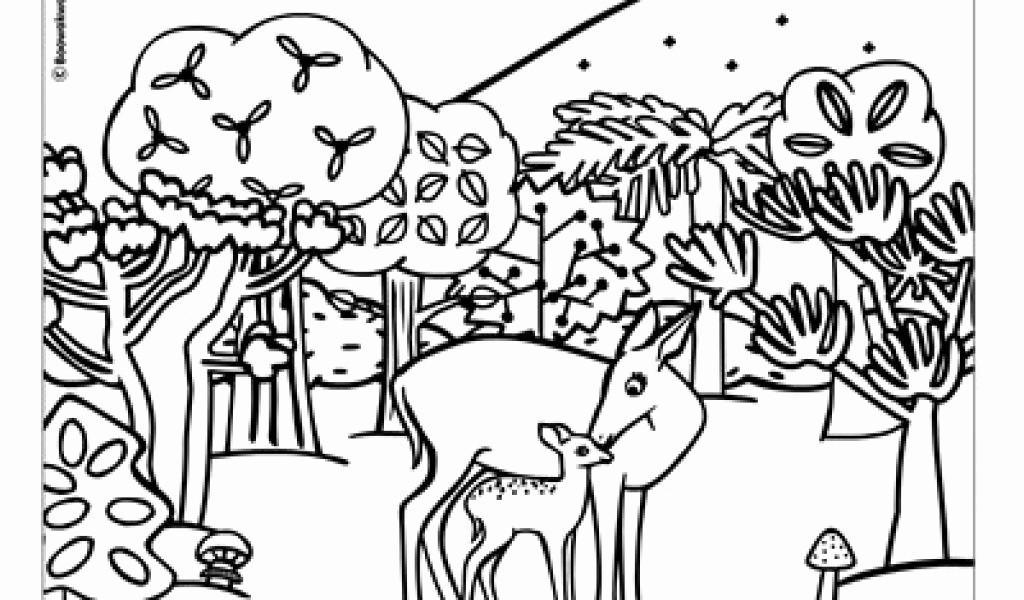 Ausmalbilder thema Wald Das Beste Von Wald Zum Ausmalen Beispiele Für Bilder 37 Tiere Im Wald Ausmalbilder Sammlung