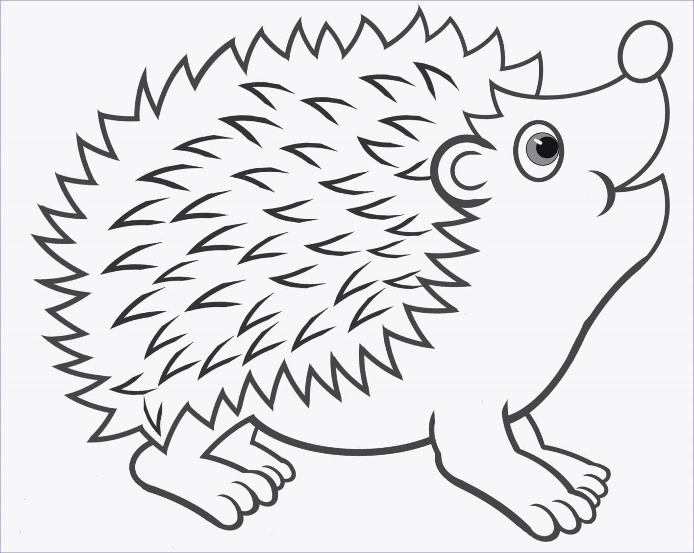 ausmalbilder tiere im wald kostenlos - cartoon-bild