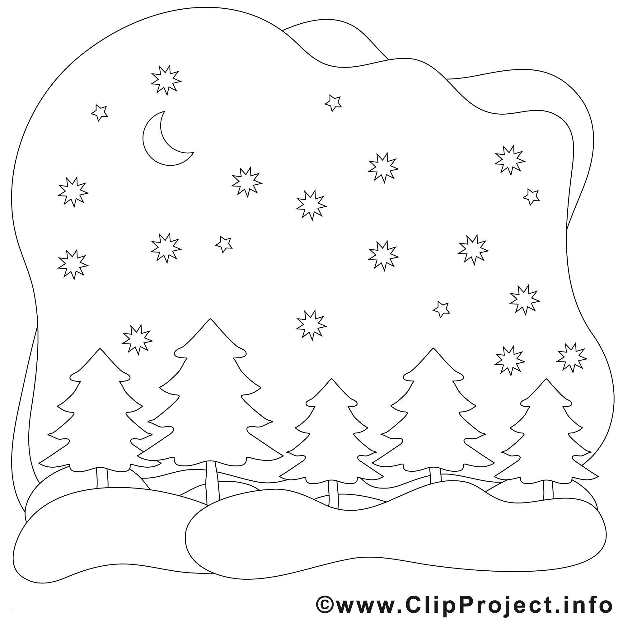 Ausmalbilder thema Wald Inspirierend 38 Ausmalbilder Winter Gratis Scoredatscore Frisch Ausmalbilder Wald Fotografieren