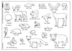 Ausmalbilder Tiere Im Wald Frisch Natur Wald Herbst Tiere Malvorlage Kindergarten Galerie