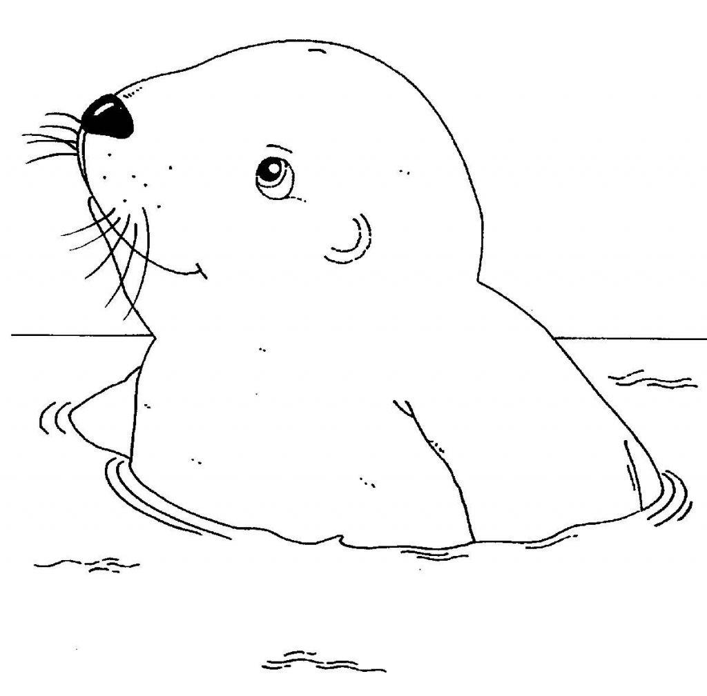 Ausmalbilder Tiere Im Wasser Das Beste Von Janbleil Tiere Malvorlagentv Ausmalbilder Zum Ausdrucken Tiere Bild