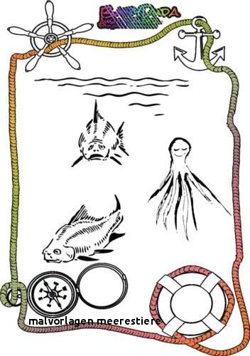 Ausmalbilder Tiere Im Wasser Einzigartig Malvorlagen Meerestiere Ausmalbilder Tiere 12 Zeichnen Pinterest Fotografieren