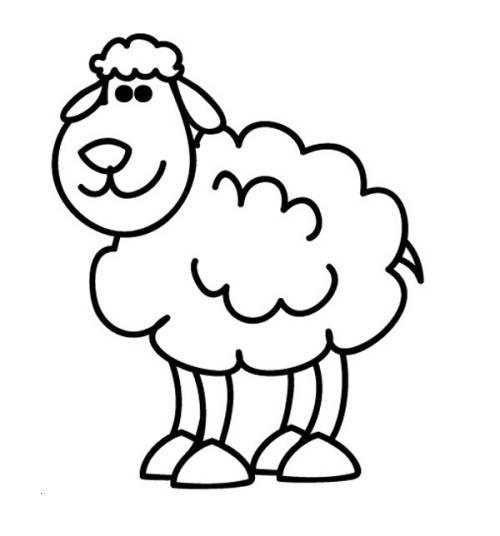 Ausmalbilder Tiere Im Wasser Neu Kostenlose Malvorlage Tiere Schaf Zum Ausmalen Zum Ausmalen Bild