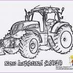 Ausmalbilder Traktor Mit Frontlader Inspirierend Janbleil Spinne Ausmalbilder Fa¼r Kinder Ausmalbild Spinne Bild