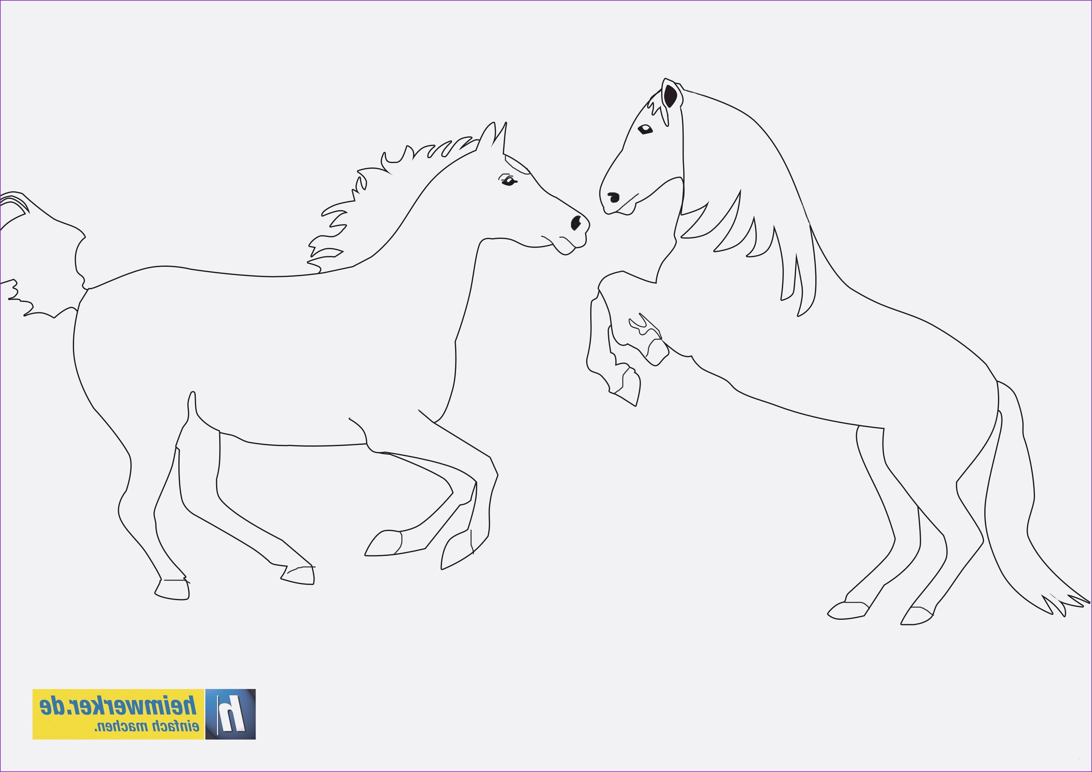 Ausmalbilder Von Bibi Und Tina Inspirierend 29 Elegant Bibi Und Tina 4 Ausmalbilder – Malvorlagen Ideen Bilder