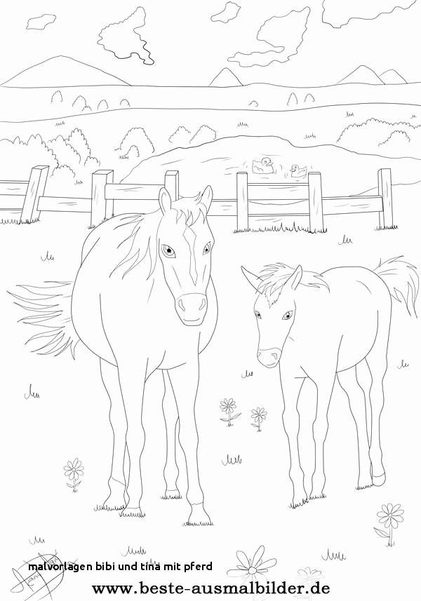 Ausmalbilder Von Bibi Und Tina Neu 23 Malvorlagen Bibi Und Tina Mit Pferd Colorbooks Colorbooks Das Bild
