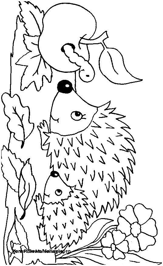 Ausmalbilder Winnie Pooh Neu Herbst Baum Malvorlagen Herbstbild Ausmalen Awesome 40 Ausmalbilder Sammlung