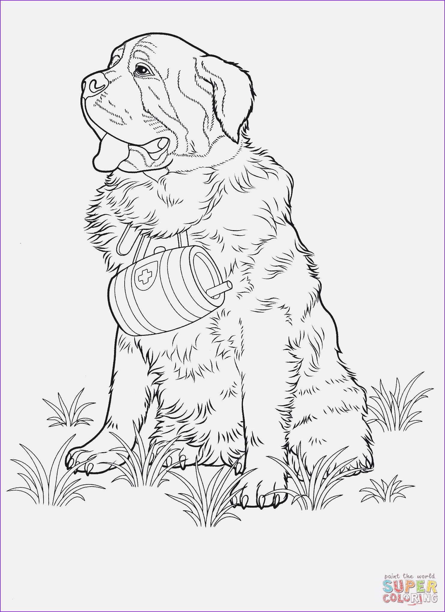 Ausmalbilder Zum Ausdrucken Hunde Das Beste Von Hunde Ausmalbilder Zum Ausdrucken Uploadertalk Best Hunde Sammlung