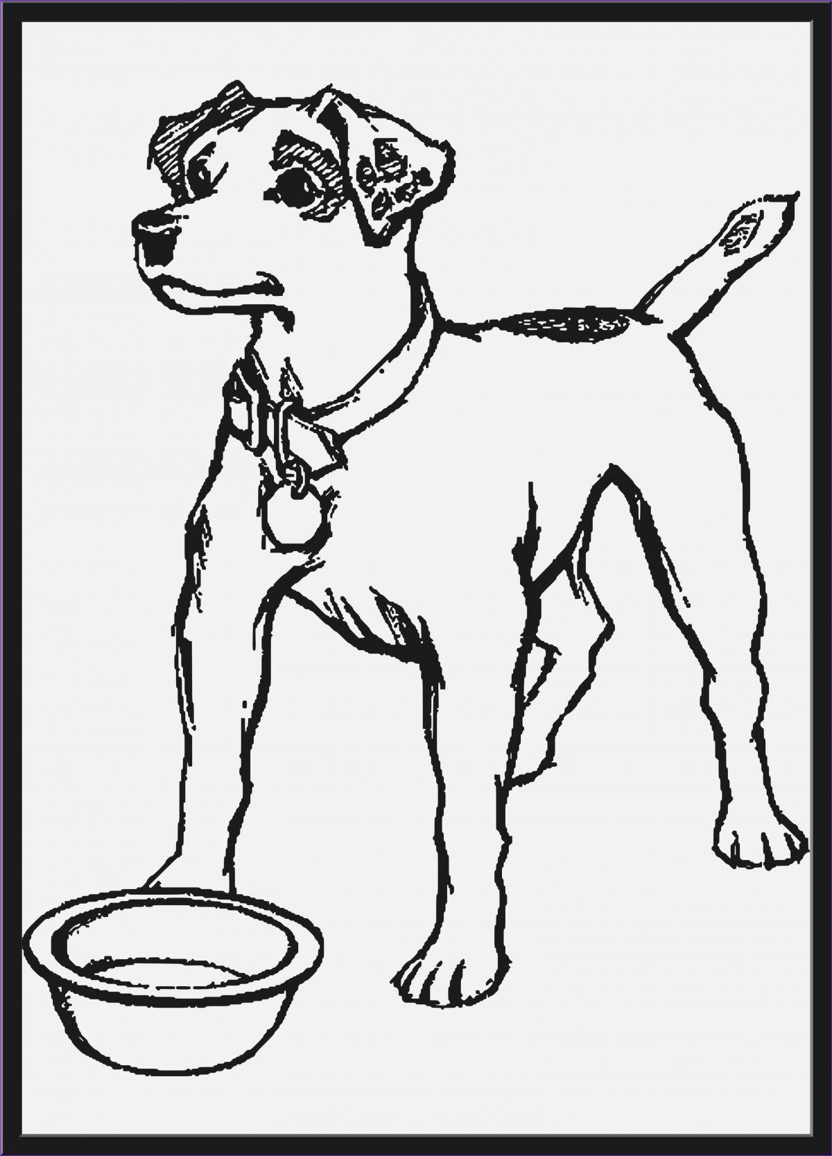 Ausmalbilder Zum Ausdrucken Hunde Einzigartig Hunde Ausmalbilder Zum Ausdrucken Uploadertalk Inspirierend Fotografieren
