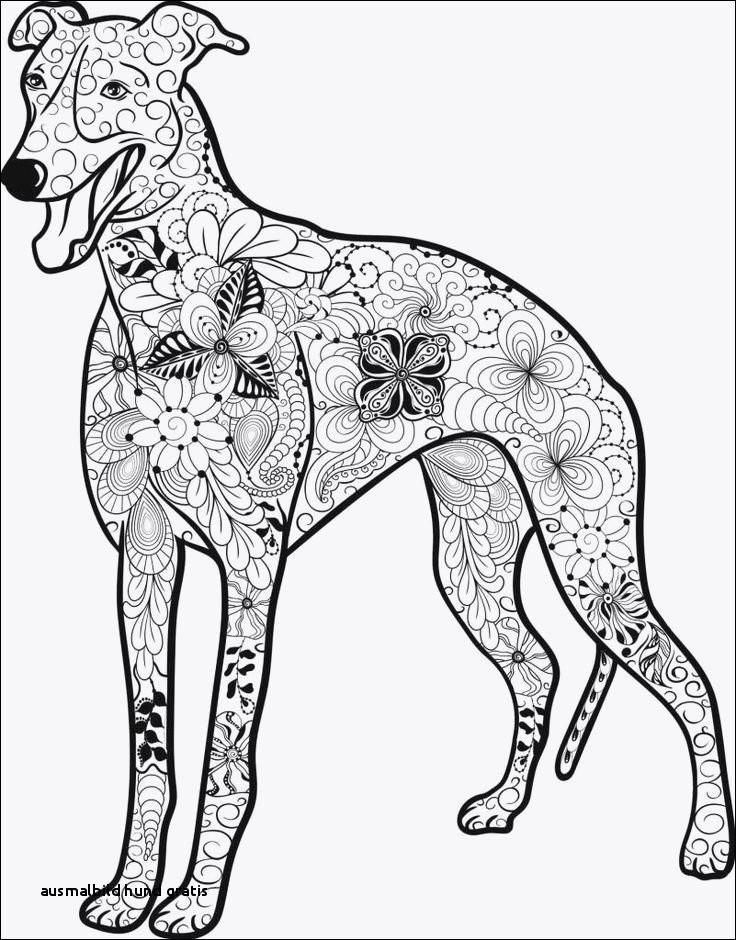Ausmalbilder Zum Ausdrucken Hunde Genial Ausmalbild Hund Gratis Ausmalbilder Hunde Zum Ausdrucken Kostenlos Bild
