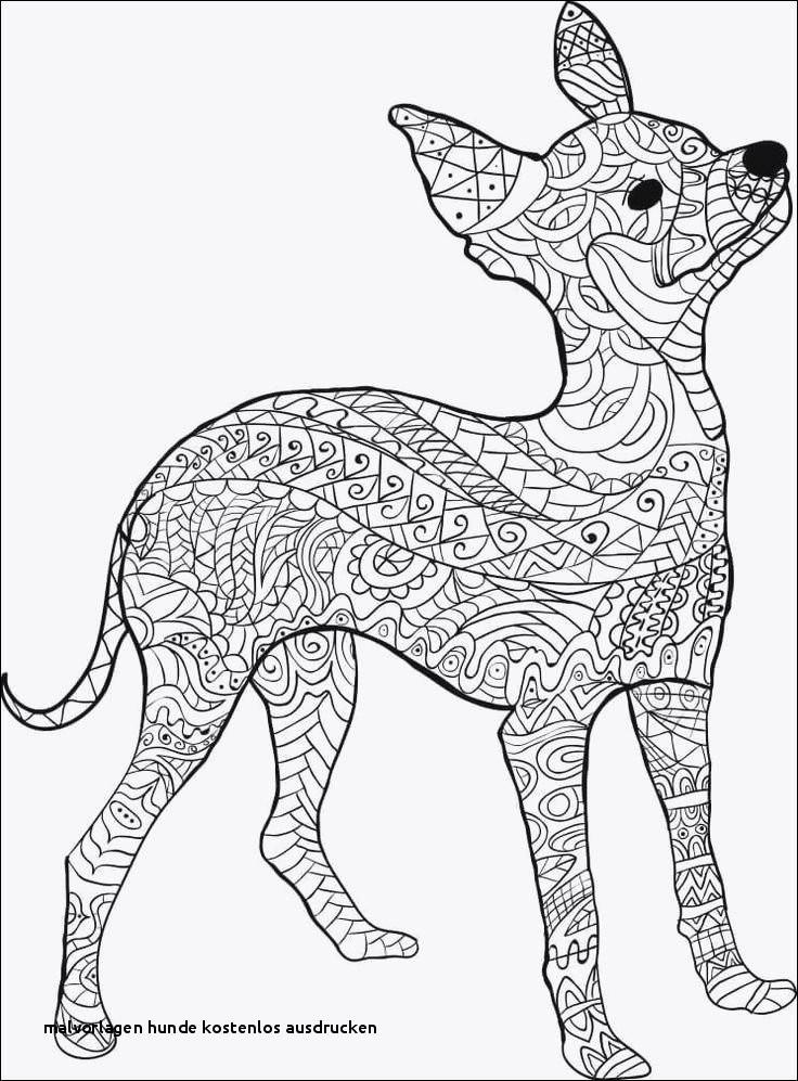 Ausmalbilder Zum Ausdrucken Hunde Genial Malvorlagen Hunde Kostenlos Ausdrucken Ausmalbilder Hunde Zum Sammlung