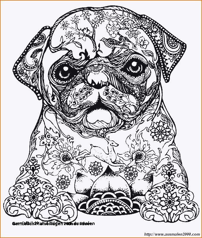 Ausmalbilder Zum Ausdrucken Hunde Inspirierend Ausmalbild Hund Bilder Zum Ausmalen Cars 3 Ausmalbilder Frisch 1970 Fotografieren