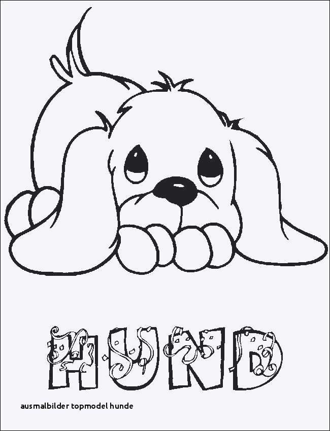 Ausmalbilder Zum Ausdrucken Hunde Inspirierend Ausmalbilder topmodel Hunde Ausmalbilder Hunde Zum Ausdrucken Fotos