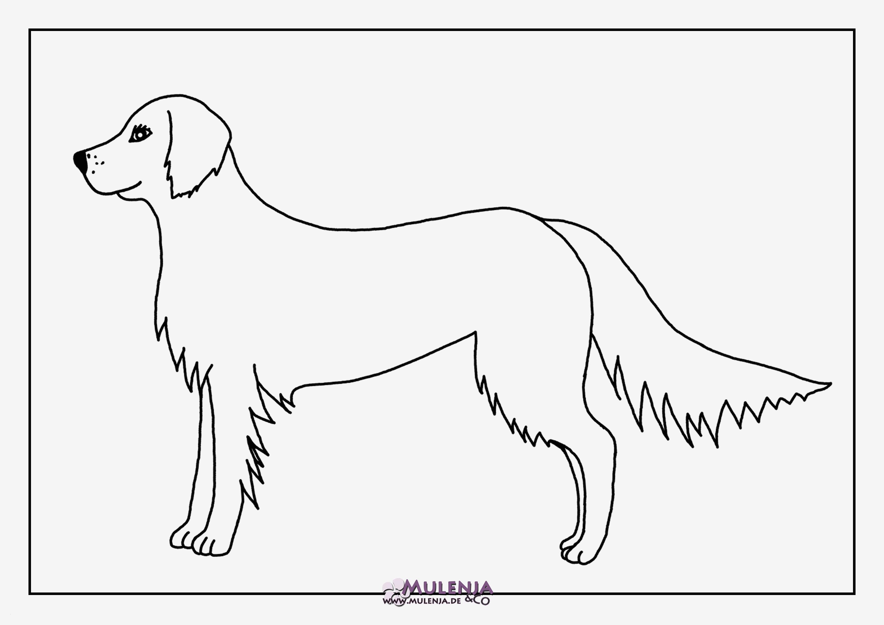 Ausmalbilder Zum Ausdrucken Hunde Inspirierend Malvorlagen Hunde Kostenlos Ausdrucken Beispielbilder Färben Stock