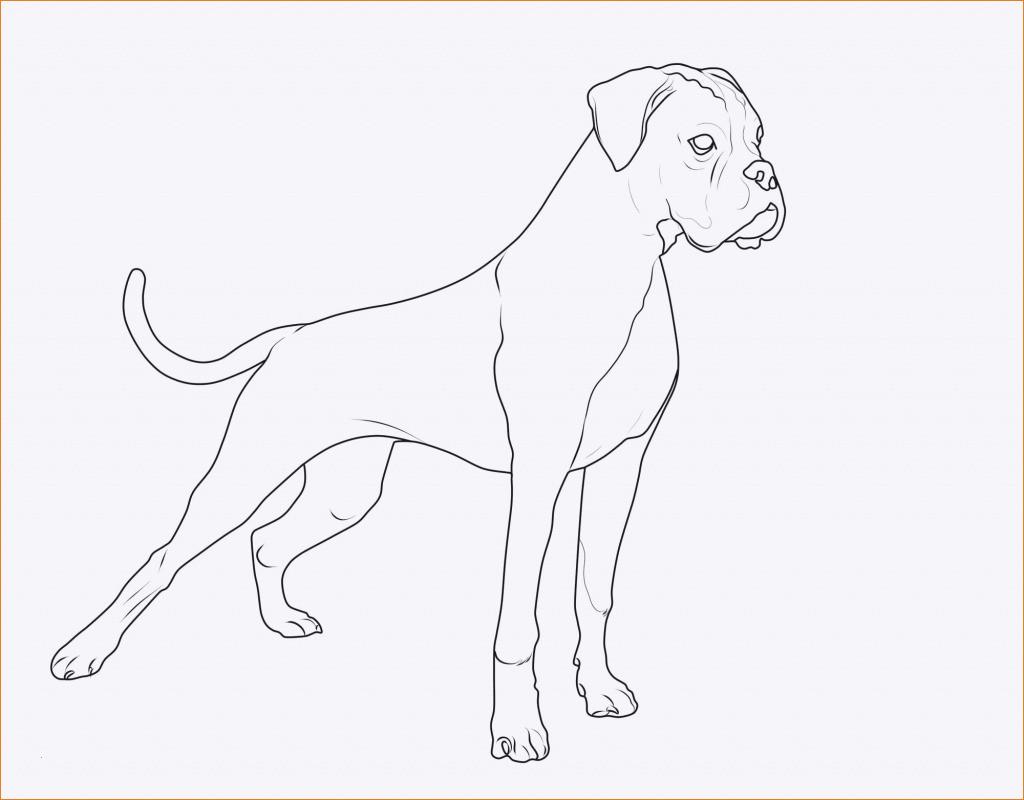 Ausmalbilder Zum Ausdrucken Hunde Neu Ausmalbilder Hunde Baby Uploadertalk Schön Ausmalbilder Hunde Zum Das Bild