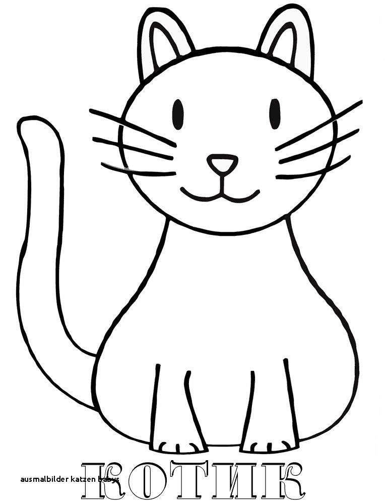 Baby Katzen Ausmalbilder Genial 21 Ausmalbilder Katzen Babys Colorprint Galerie