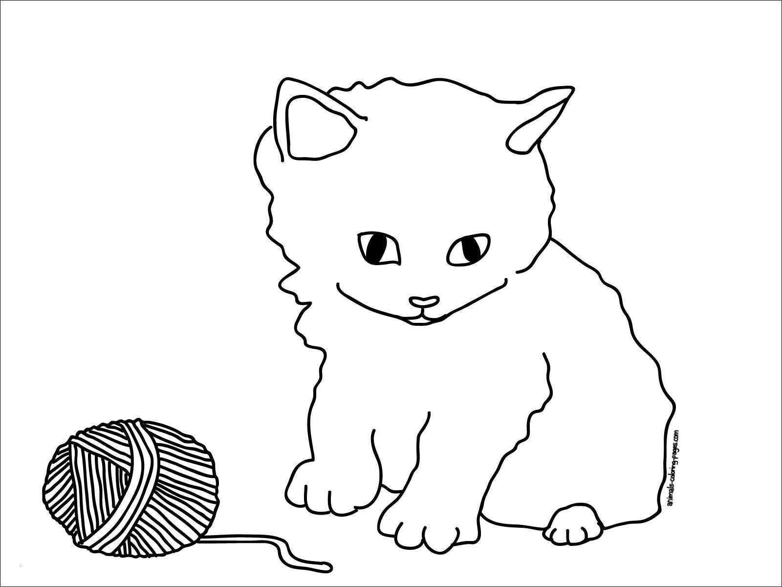 Baby Katzen Ausmalbilder Genial Katze Ausmalbilder Zum Ausdrucken Abbild Malvorlagen Igel Frisch Bilder