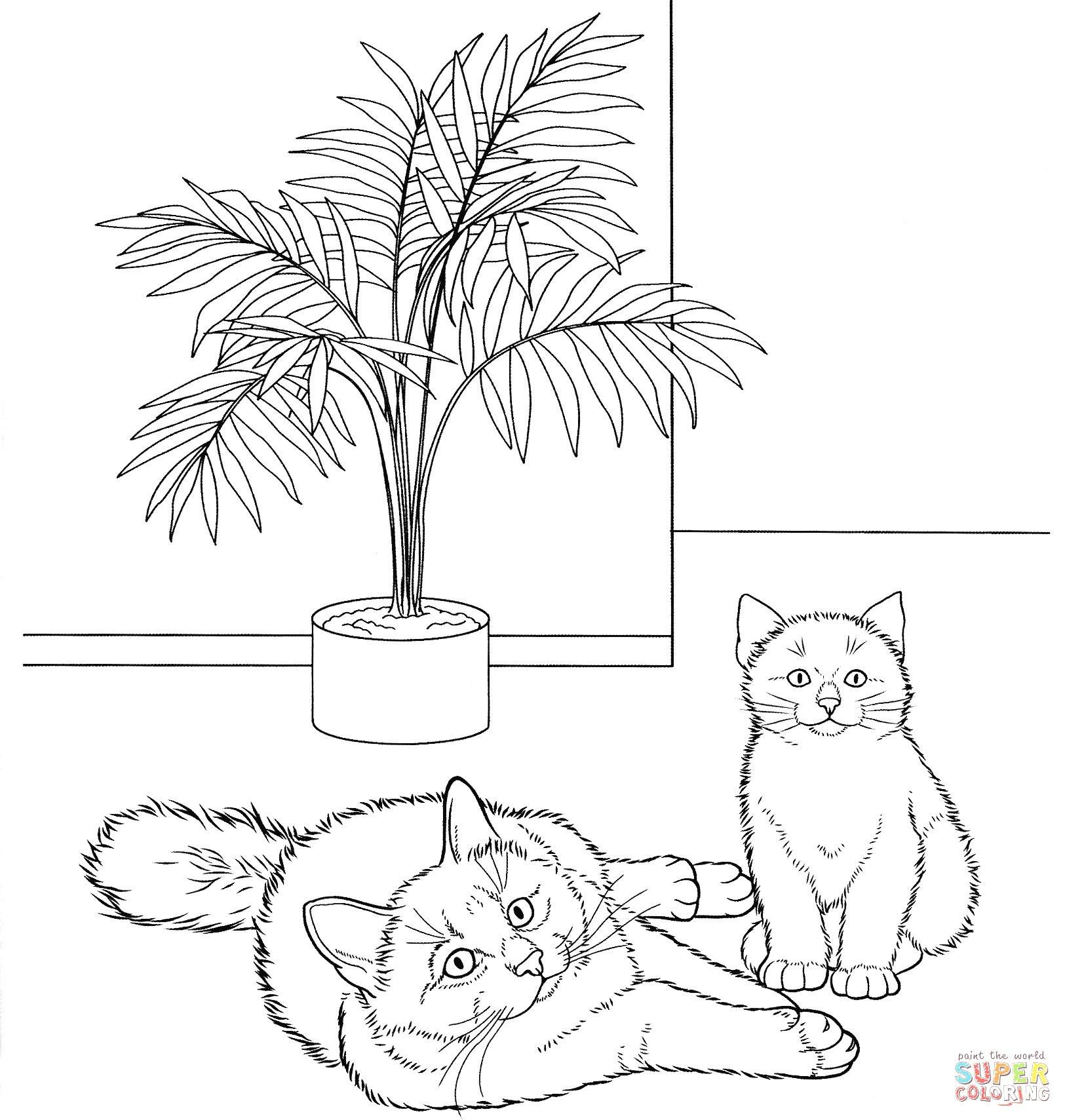 Baby Katzen Ausmalbilder Neu Katzen Ausmalbilder Neu 100 Schöne Ausmalbilder Für Erwachsene Sammlung