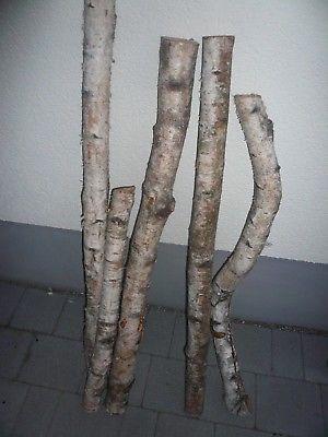 Bäume Zum Ausmalen Neu Restposten Holzscheiben Das Bild