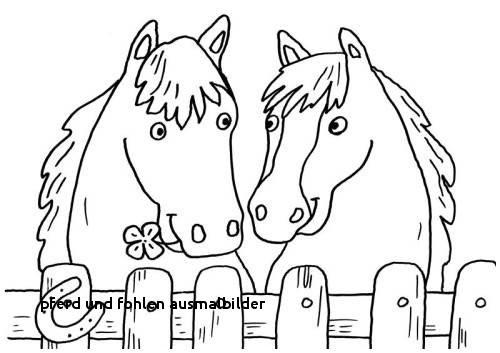Ballerina Zum Ausmalen Frisch Pferd Und Fohlen Ausmalbilder Kostenlose Malvorlage Pferde Zwei Bild