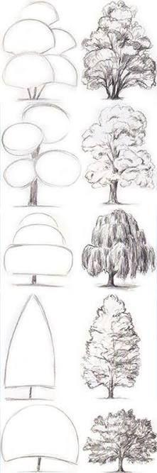Baum Zeichnung Bleistift Das Beste Von Bleistift Zeichnung Einer Schönen Frau Mit Langen Haaren Galerie