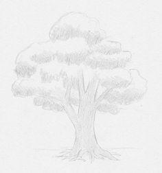 Baum Zeichnung Bleistift Das Beste Von Gläser Bleistift Zeichnungen In 2018 Pinterest Fotografieren