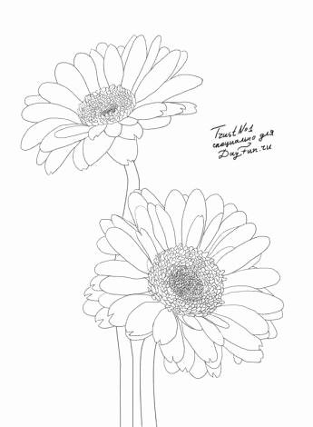 Baum Zeichnung Bleistift Das Beste Von Schmetterling Zeichnen Bleistift Stock 14 Best Baum Zeichnung Galerie