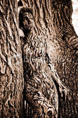 Baum Zeichnung Bleistift Das Beste Von Tree Camouflage Fotografieren