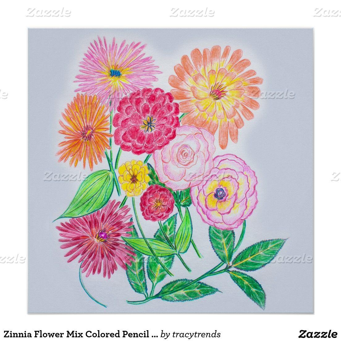Baum Zeichnung Bleistift Das Beste Von Zinnia Blumen Mischung Farbiges Bleistift Zeichnen Poster Stock