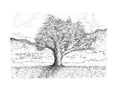 Baum Zeichnung Bleistift Einzigartig 28 Besten Dermot O Shea Arts Indian Ink Bilder Auf Pinterest Galerie