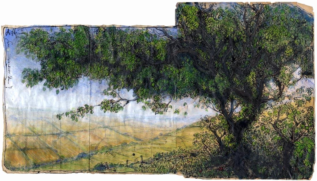 Baum Zeichnung Bleistift Einzigartig 35 Best Fotografie Von Baum Zeichnung Bleistift Stock