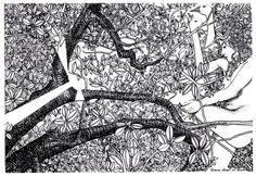 Baum Zeichnung Bleistift Frisch 56 Besten ischtwans © Frühe Werke Bilder Auf Pinterest Stock