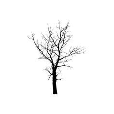 Baum Zeichnung Bleistift Frisch 8 Besten Bäume Bilder Auf Pinterest Stock
