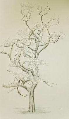Baum Zeichnung Bleistift Genial 715 Besten Bilder Bilder Auf Pinterest In 2018 Sammlung