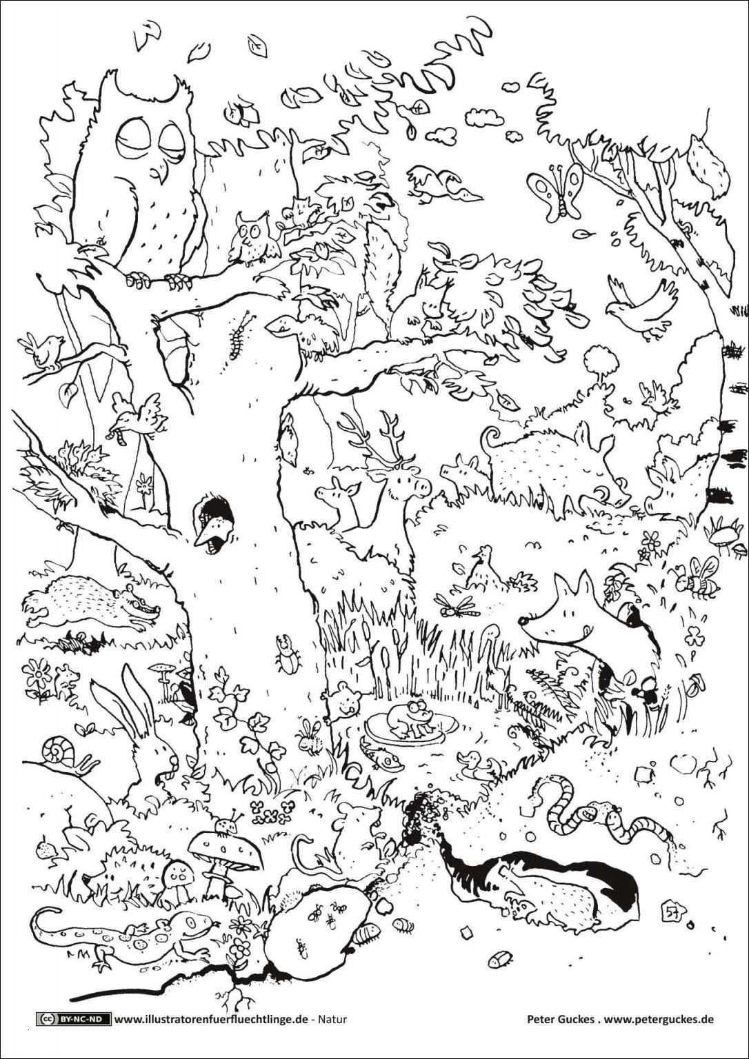Baum Zeichnung Bleistift Inspirierend Wald Gezeichnet Bleistift Fotos 40 Ausmalbilder Herbst Baum Das Bild