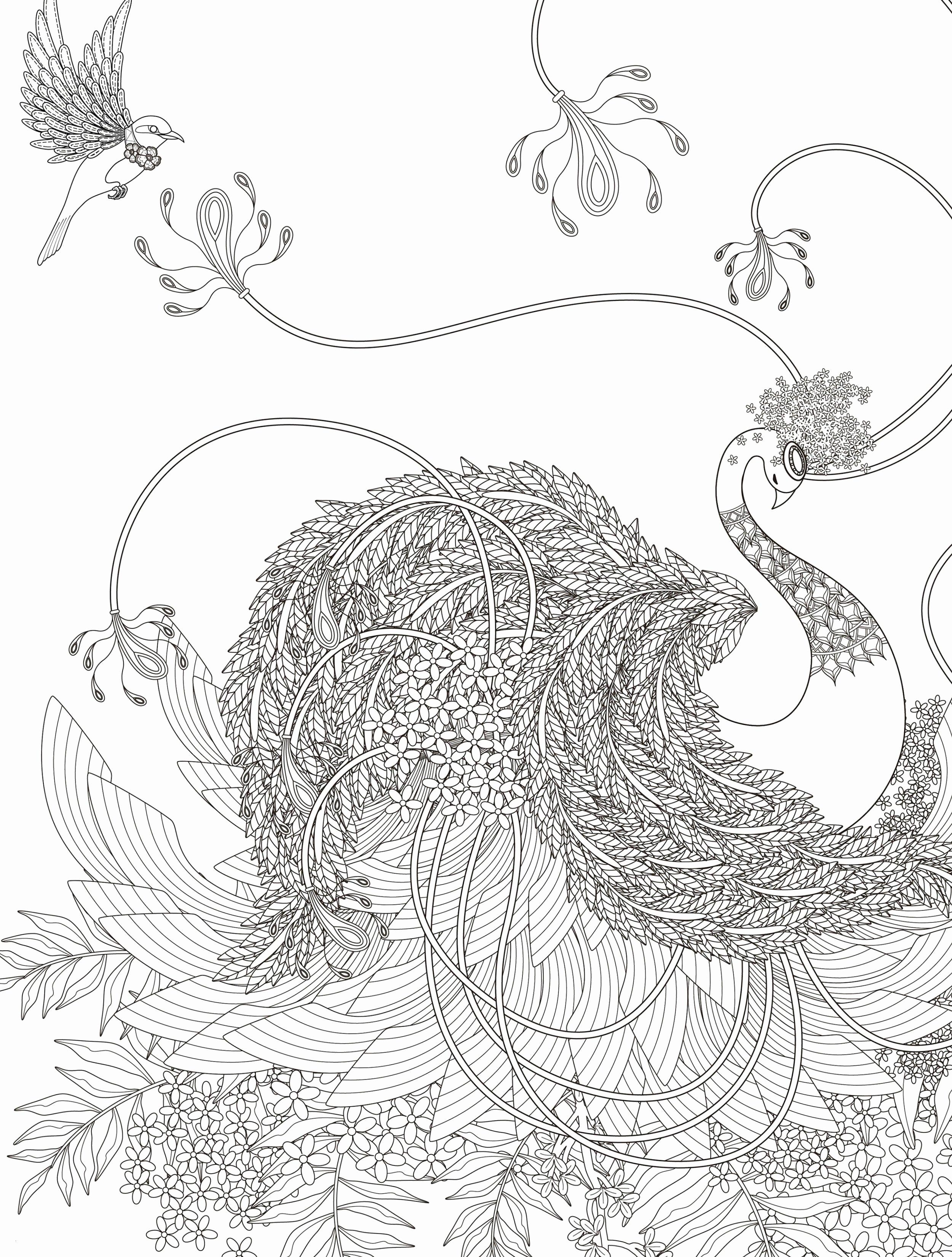 Baum Zeichnung Bleistift Neu Schmetterling Zeichnen Bleistift Sammlungen 3d Schmetterling Kunst Stock