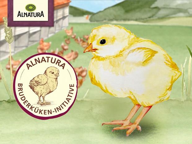 Best Fiends Ostereier 2018 Frisch Alnatura Bio Lebensmittel Aus Dem Super Natur Markt Bilder