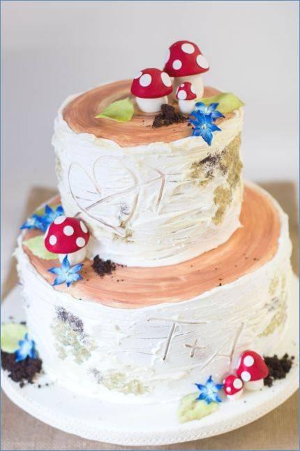 Bibi Und Tina Kuchen Das Beste Von Kuchen Idee – Seite 23 – Stringerub Fotografieren