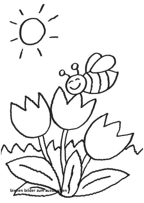 Biene Maja Ausmalbild Frisch Bienen Bilder Zum Ausdrucken Malvorlagen Biene Maja Drucken Das Bild