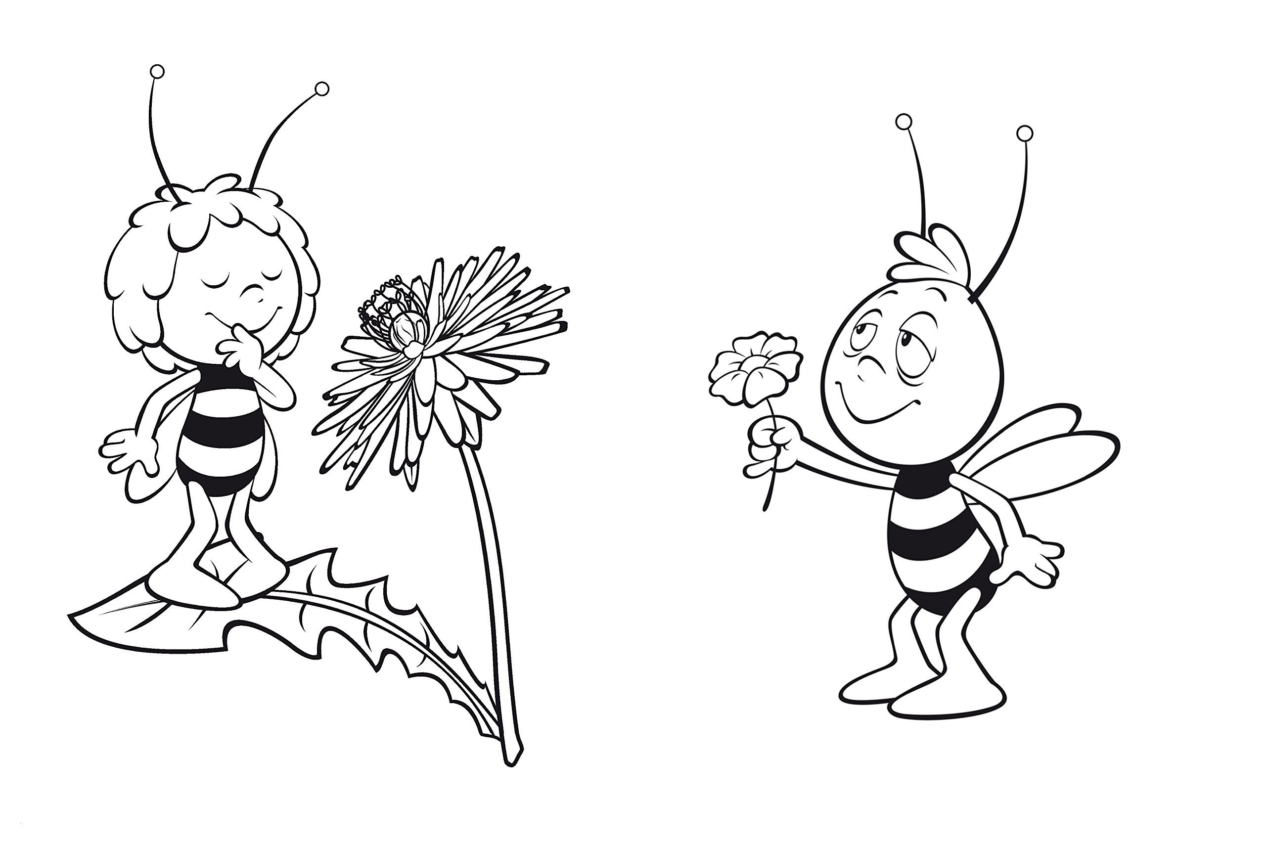 Biene Maja Und Willi Ausmalbilder Inspirierend Bienen Ausmalbilder Schön 35 Ausmalbilder Biene Maja Und Willi Stock