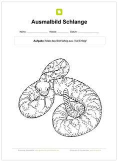 Biologie Deckblatt Zum Ausmalen Frisch Die 127 Besten Bilder Von Neue Arbeitsblätter In 2018 Das Bild