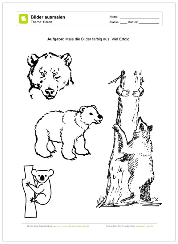 Biologie Deckblatt Zum Ausmalen Frisch Ein Kostenloses Arbeitsblatt Zum thema Bären Auf Dem Schüler Das Bild