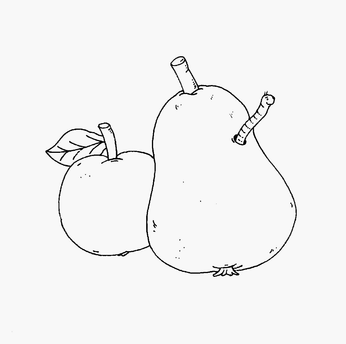 Birne Zum Ausmalen Genial 41 Einfach Apfel Zum Ausmalen Beschreibung Galerie
