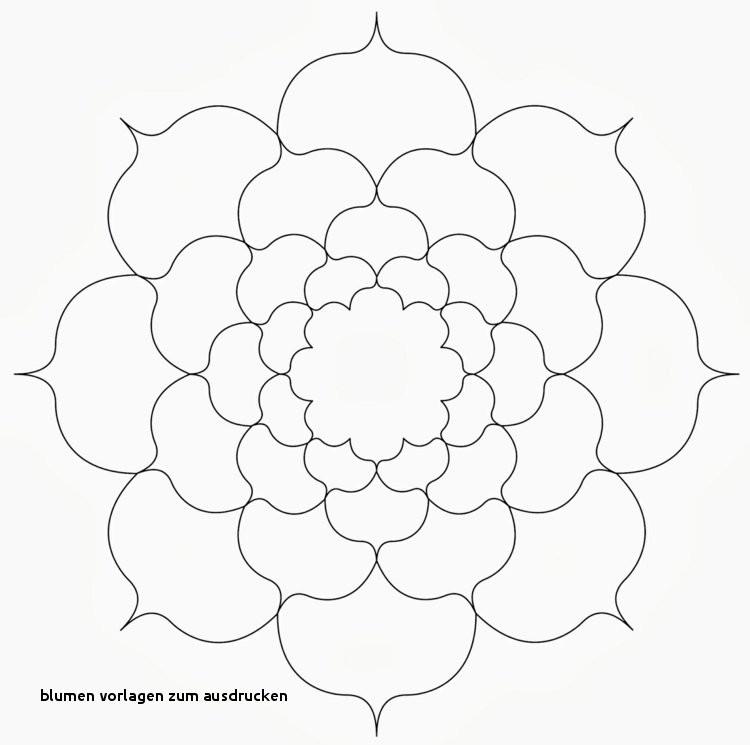 Blumenranken Zum Ausdrucken Frisch Blumen Vorlagen Zum Ausdrucken Malvorlagen Igel Elegant Igel Bilder