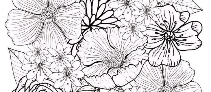Blumenranken Zum Ausdrucken Genial Ausmalbilder sommer 40 Ausmalbilder Blumen Zum Ausdrucken Stock