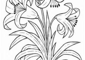 Blumenranken Zum Ausdrucken Inspirierend 28 Elegant Blumen Zum Ausdrucken – Malvorlagen Ideen Bilder